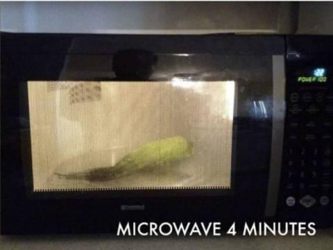 Εκπληκτικό: Τι θα γίνει αν βάλεις φρέσκο καλαμπόκι στα μικροκύματα;