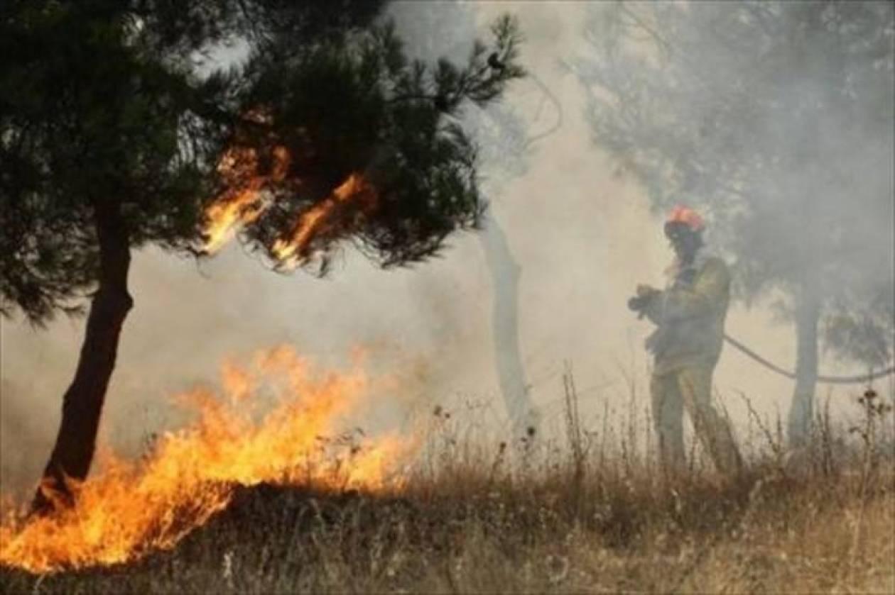 Πυρκαγιά στο Πικέρμι