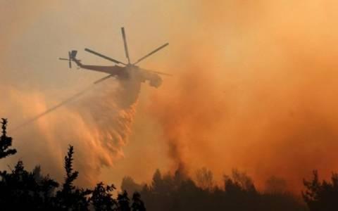 Σε ύφεση οι φωτιές σε Άγιο Όρος και Αρκαδία