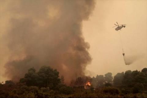 Άγιο Όρος: Μάχη των πυροσβεστικών δυνάμεων με την πύρινη λαίλαπα!