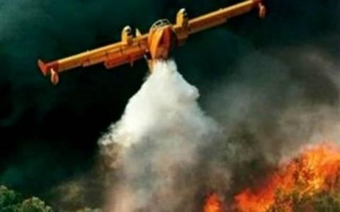 Σε εξέλιξη αυτή την ώρα πυρκαγιά στην Μεσσηνία