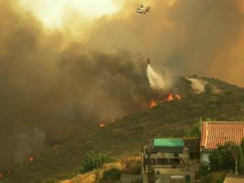 Κύπρος: Υπό έλεγχο η μεγάλη πυρκαγιά μεταξύ Σκαρίνου - Λευκάρων
