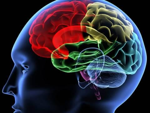 Κι όμως υπάρχει αποχετευτικό σύστημα στον εγκέφαλο!