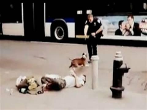 Σοκαριστικό βίντεο: Αστυνομικός πυροβολεί εν ψυχρώ σκύλο