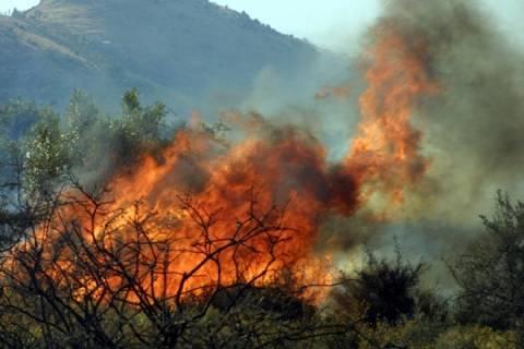Σε πύρινο κλοιό η χώρα - Νέα φωτιά στη Μάνδρα