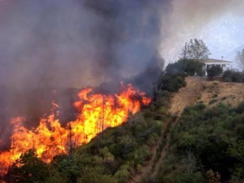 Υπό μερικό έλεγχο η πυρκαγιά στα Καλύβια Θωρικού