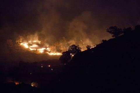 Ιταλία: Εκκενώθηκαν κάμπινγκ λόγω φωτιάς