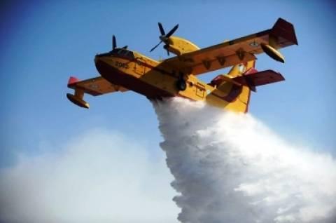 Πυρκαγιές σε Σαλαμίνα και Άνδρο