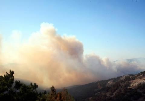 Συνεχίζει το καταστροφικό της έργο η φωτιά στη Χίο