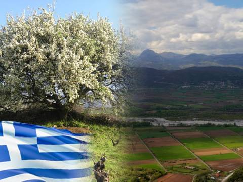 Η θεία Ελληνική γη... κοιτίδα ελευθερίας!