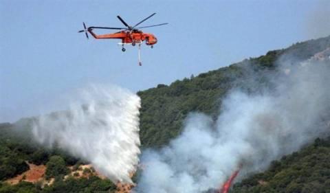 Σε ύφεση τα πύρινα μέτωπα στην Πελοπόννησο