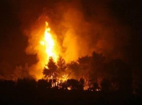 Φωτιά στις Αφίδνες: Κινδυνεύει το στρατόπεδο (vid)!