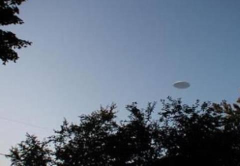 UFO ανάμεσα στις φυλλωσιές!