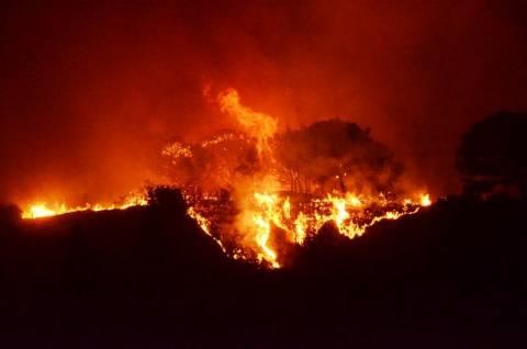 Κοντά σε σπίτια η πυρκαγιά στα Καλά νερά Πηλίου