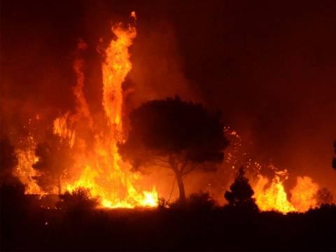 Μάχη με τις φλόγες σε όλη την χώρα