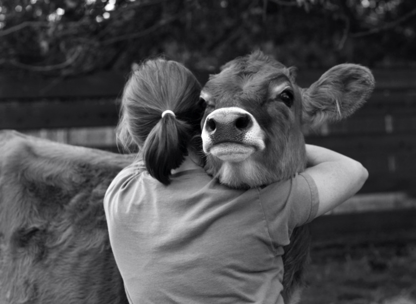 Αγκαλιές ανθρώπων με ζώα που θα σας συγκινήσουν! (pics)
