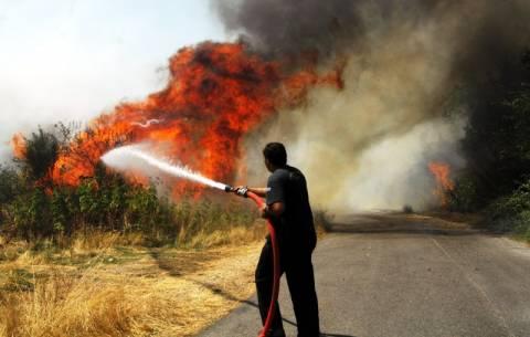 Υπό μερικό έλεγχο η φωτιά στο Κορακοβούνι Ηρακλείου