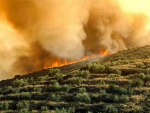 Κρήτη: Καίγεται και πάλι η Βιάννος