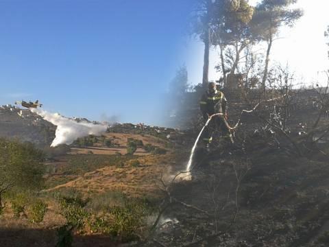 Κάηκαν σπίτια στον Νέο Βουτζά