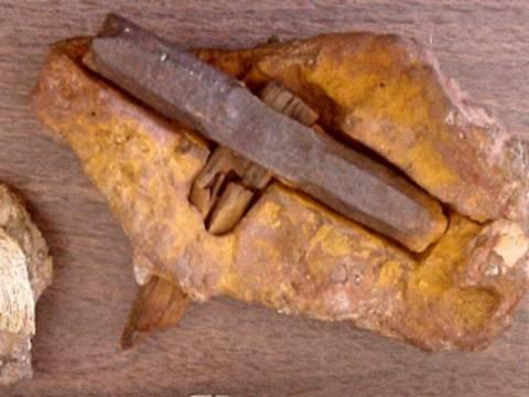 Σφυρί μέσα σε βράχο 75 εκατομμυρίων ετών (pics)