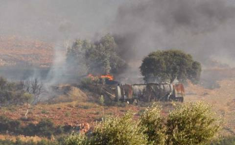Λαμία: Κάηκαν 60 αιγοπρόβατα σε πυρκαγιά