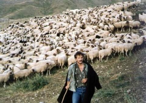 Κινητοποιήσεις κτηνοτρόφων-Ζητούν μέτρα στήριξης