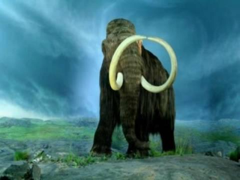 Έρευνες για την κλωνοποίηση... μαμούθ!