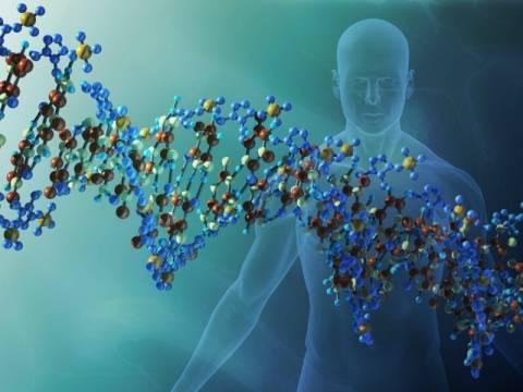 Πέντε γονίδια καθορίζουν το σχήμα του προσώπου