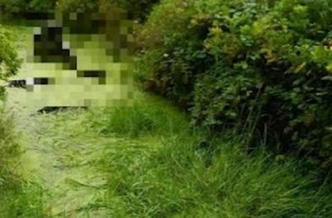 Τρομακτικό γλυπτό σε βάλτο της Ιρλανδίας! (pics)