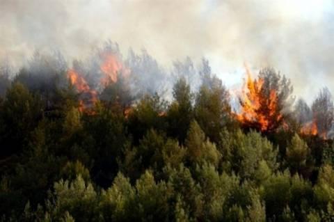 Χανιά: Μεγάλη φωτιά απειλεί σπίτια και αρχαιολογικό χώρο