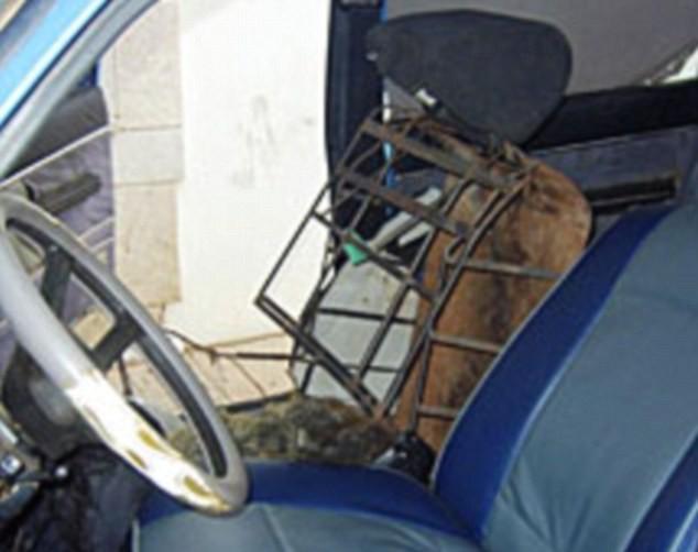 Παράνομος μετανάστης είχε μεταμφιεστεί σε... κάθισμα αυτοκινήτου!