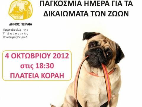 Ο Δήμος Πειραιά γιορτάζει την Παγκόσμια Ημέρα των Ζώων