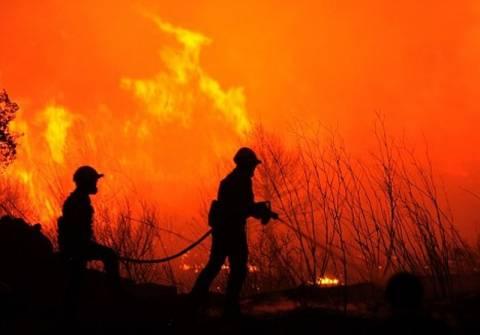 FSB: Η Αλ Κάιντα πίσω από τις πυρκαγιές στην Ευρώπη
