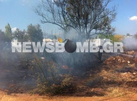 Βίντεο: Φωτιά απείλησε σπίτια στη Νέα Κηφισιά