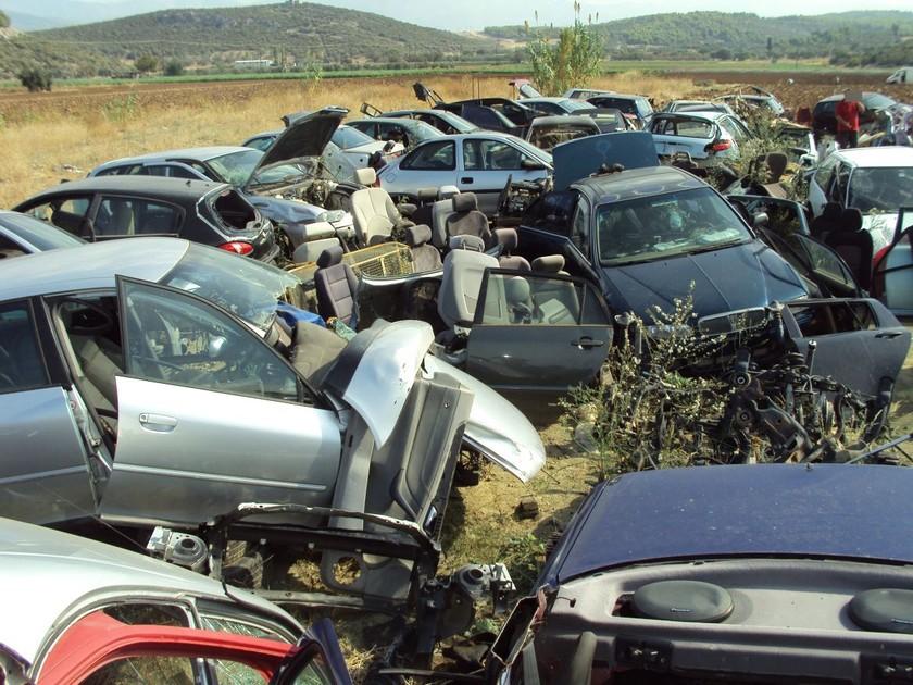 Ψαχνά Ευβοίας: Εντοπίστηκε μάντρα με κλεμμένα αυτοκίνητα (pics)