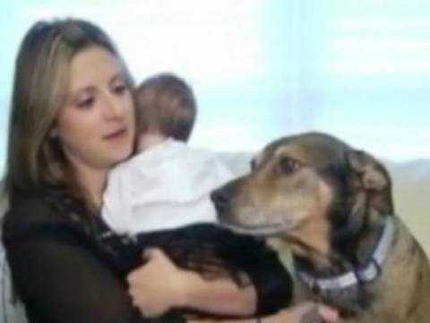Σκύλος-ήρωας έσωσε τη ζωή νεογέννητου!