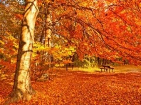 Πέντε περίεργες αλλαγές που μας φέρνει το φθινόπωρο