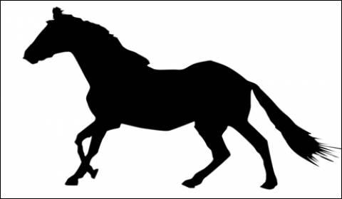 Ανέβηκε στα 200 εκατ. η αξία του πιο γνωστού αλόγου ιπποδρομιών