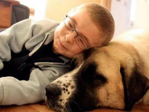 7χρονος με σπάνιο σύνδρομο ξεπέρασε τη φοβία με τη βοήθεια ενός σκύλου