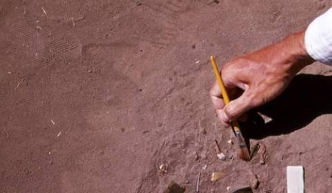 Γερμανοί αρχαιολόγοι ανακάλυψαν καρφίτσα μαλλιών ηλικίας 3400 ετών
