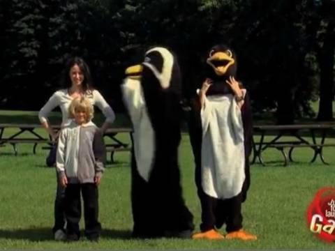Βίντεο: Απίθανη φάρσα με... πιγκουίνους!