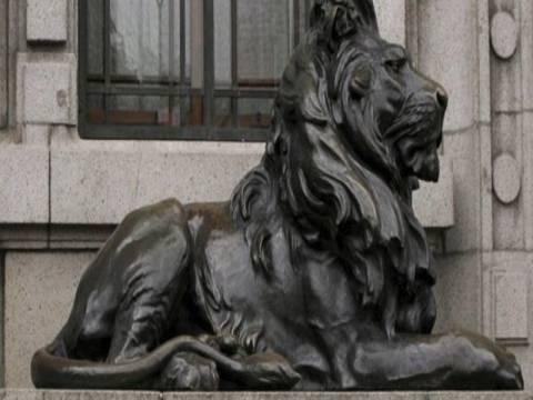 Φοιτητής έκανε σεξ στη μέση μιας πλατείας με ένα.... λιοντάρι!