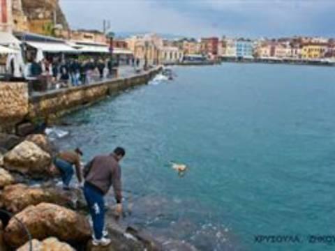 Κρήτη: Πολίτες έσωσαν αδέσποτο από βέβαιο πνιγμό