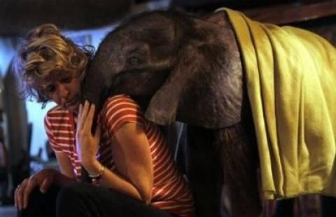Συγκινητικό! Υιοθέτησε ενα ελεφαντάκι