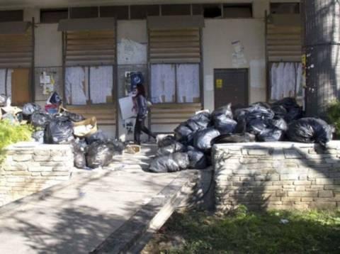«Εκστρατεία» καθαρισμού στο ΑΠΘ