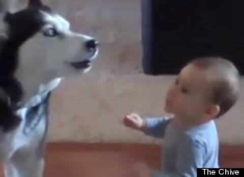 Το βίντεο που σαρώνει στο Διαδίκτυο: Μωρό συνομιλεί με... σκύλο!