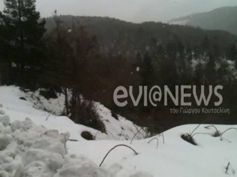 Χιονισμένα τα βουνά της Χαλκίδας