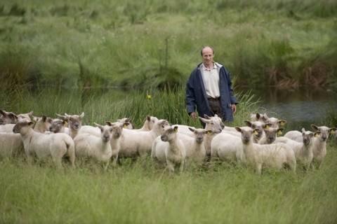 Οικογένεια Αλβανών κλέβει εδώ και 20 χρόνια κτηνοτρόφους Θεσπρωτίας