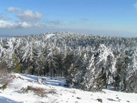 Χιόνια ακόμα και στην Κύπρο