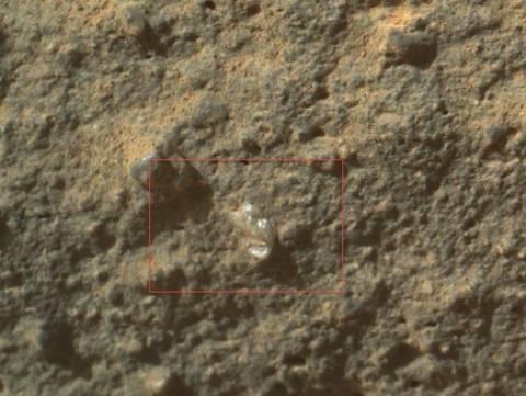 Δείτε: Το Curiosity βρήκε «εξωγήινο λουλούδι» στον Άρη!
